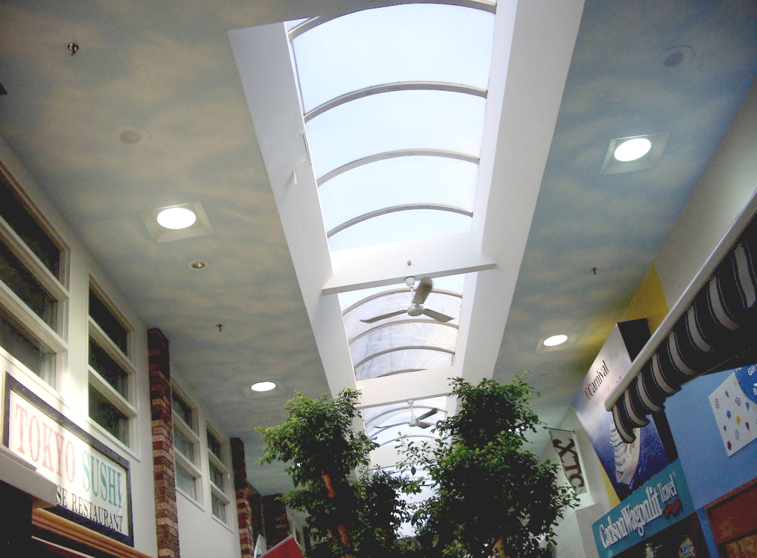 A Continuous Vault Skylight, Rather Than Multiple Individual Skylights Can  Be The Solution!